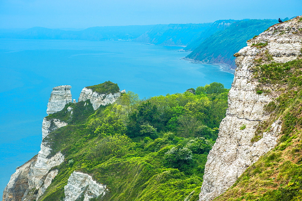 Beer Head looking towards Branscombe Mouth, between Beer and Branscombe on the Jurassic coast in Dorset, England, UK.