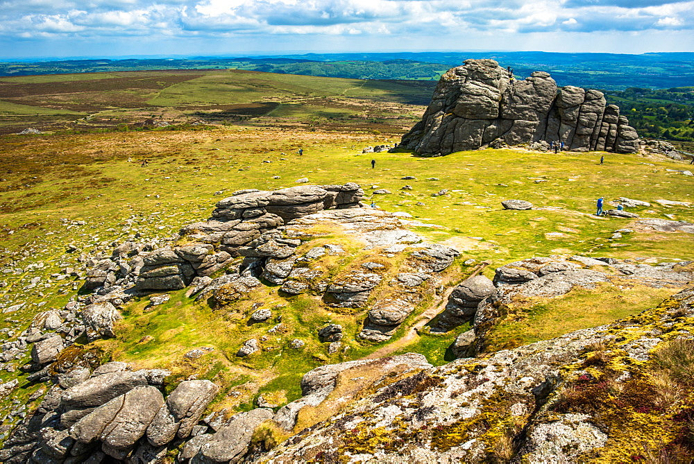Haytor Rocks, Ilsington, Dartmoor National Park, Devon, England, United Kingdom, Europe - 1267-443