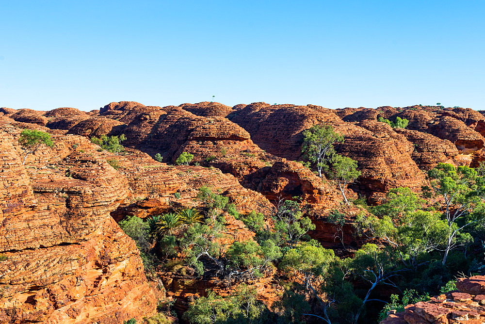 Kings Canyon, Red Centre, Australia.