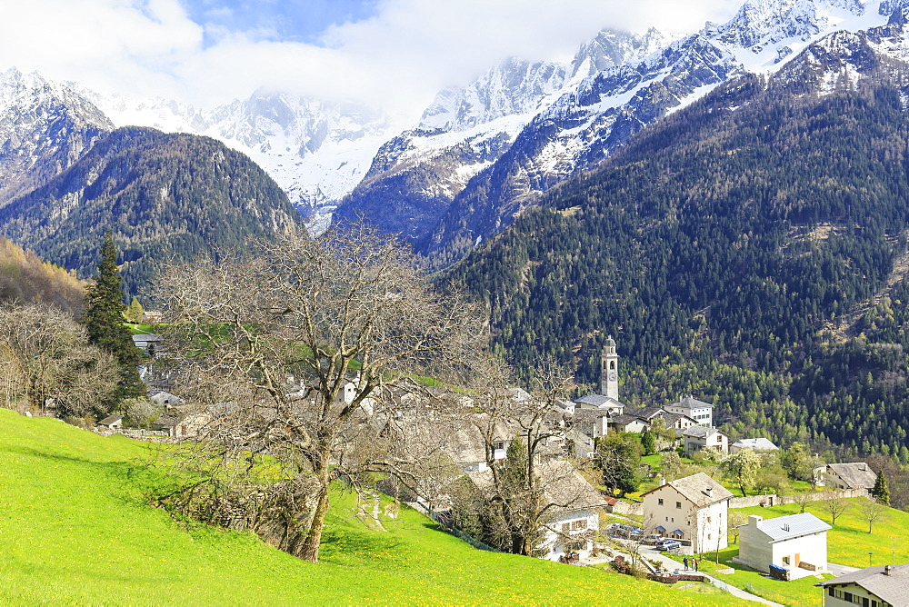 Spring at the village of Soglio, Val Bregaglia (Bregaglia Valley), Graubunden, Switzerland, Europe - 1269-208