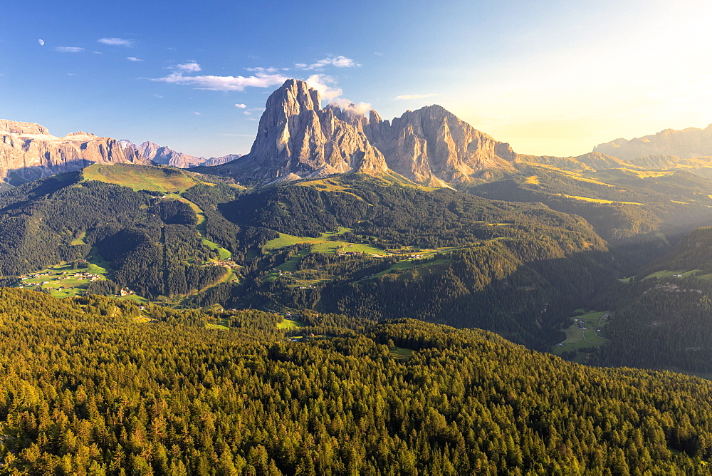 Elevated view of the forest above Gardena Valley with view on Sassolungo Group, South Tyrol, Dolomites, Italy, Europe