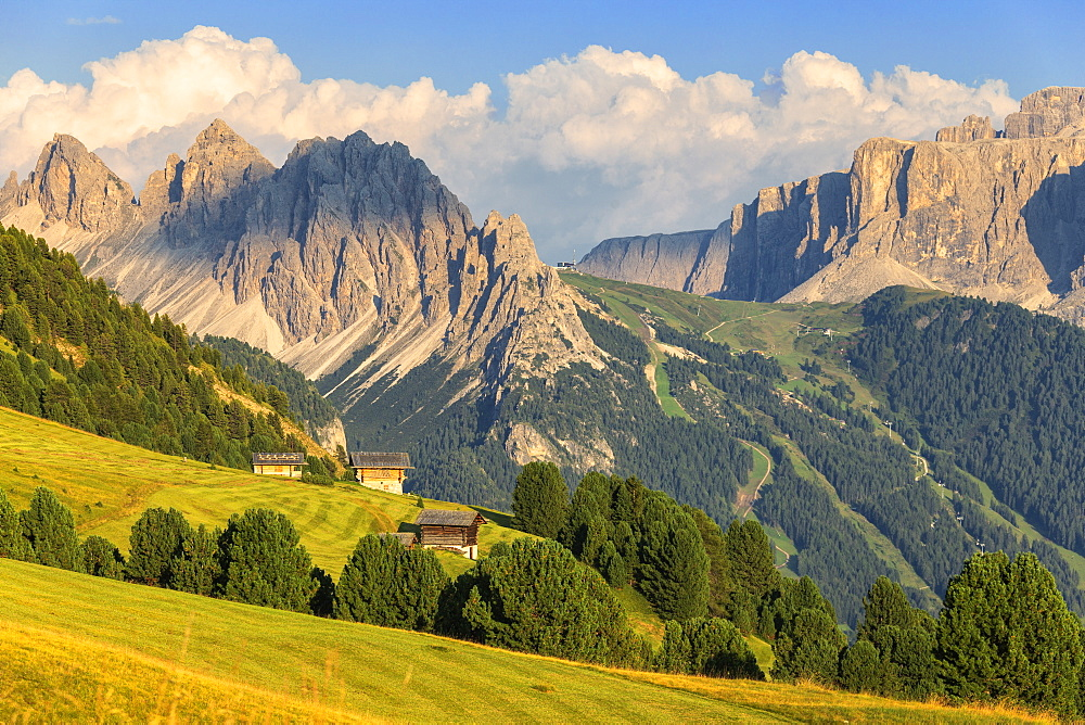 Traditional huts with Cir Group and Sella group in the background, Ortisei, Gardena Valley, South Tyrol, Dolomites, Italy, Europe - 1269-299