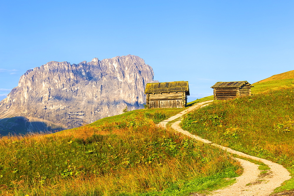 Traditional hut with Sassolungo in the background. Gardena Pass, Gardena Valley, Dolomites, South Tyrol, Italy, Europe. - 1269-304