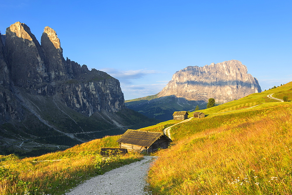 Traditional hut with Sassolungo in the background. Gardena Pass, Gardena Valley, Dolomites, South Tyrol, Italy, Europe. - 1269-306