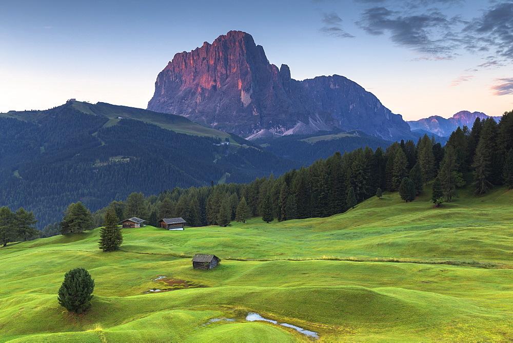 First light on Sassolungo peak. Daunei, Selva Val Gardena, Gardena Valley, South Tyrol, Dolomites, Italy, Europe. - 1269-308