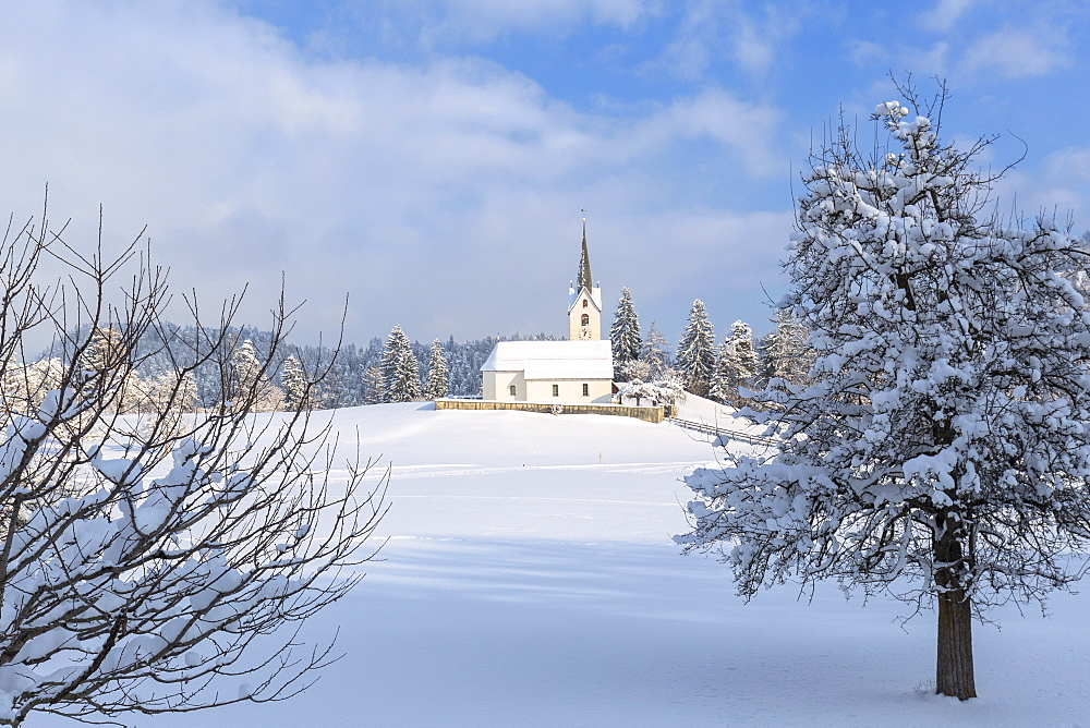 The sun illuminates the church of Versam after a snowfall, Versam, Safiental, Surselva, Graubunden, Switzerland, Europe - 1269-32