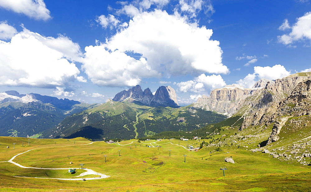 Ski slopes in summer with Sassolungo Group in the background, Pordoi Pass, Fassa Valley, Trentino, Dolomites, Italy, Europe