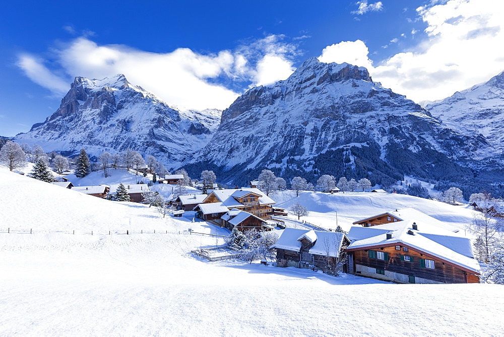 Traditional houses after a snowfall, Grindelwald, Canton of Bern, Switzerland, Europe