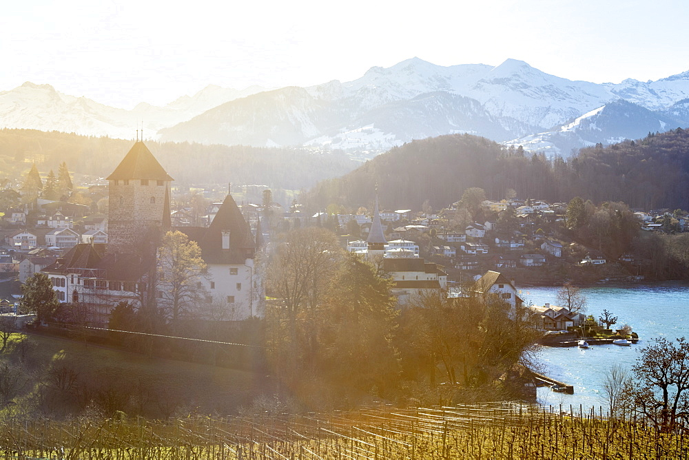 Sunny day at the castle of Spiez, Canton of Bern, Switzerland, Europe.