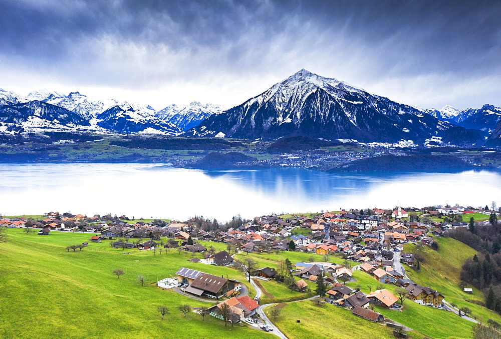 Aerial view of Sigriswil with Thun Lake, Canton of Bern, Switzerland, Europe.