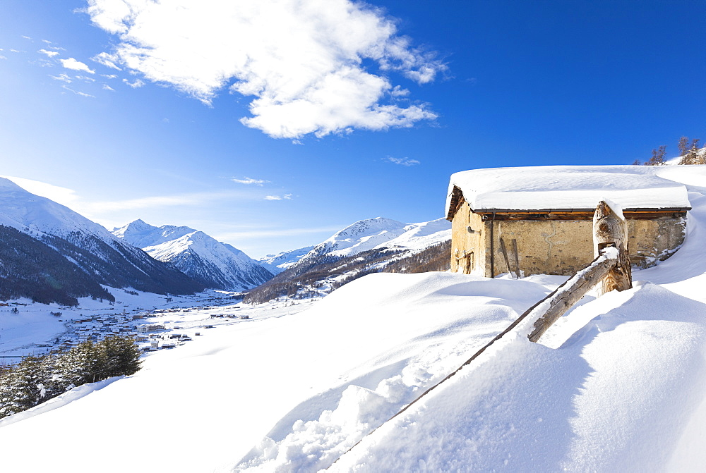 Traditional hut with view on the village in winter, Livigno, Valtellina, Lombardy, Italy, Europe - 1269-465