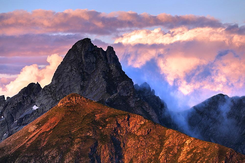 Sheep on a sunlit ridge, Valgerola, Orobie Alps, Valtellina, Lombardy, Italy, Europe - 1269-477