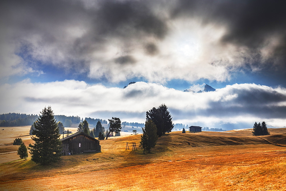 The plateau of Seiser Alm during autumn. Seiser Alm, Dolomites, province of Bolzano, South Tirol, Italy, Europe. - 1269-537
