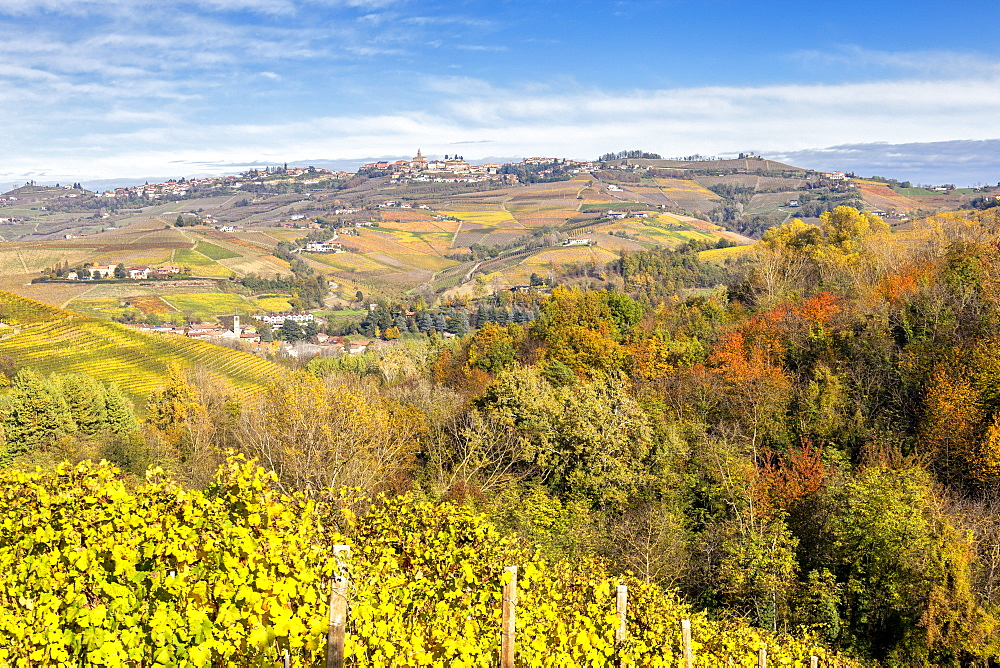Village of Diano d'Alba during autumn. Barolo wine region, Langhe, Piedmont, Italy, Europe. - 1269-540
