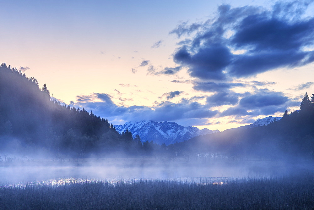 Foggy sunrise at the pond in the Pian di Gembro reserve, Pian di Gembro, Valtellina, Lombardy, Italy, Europe - 1269-644