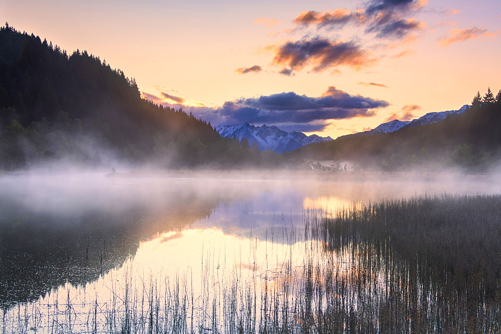 Foggy sunrise at the pond in the Pian di Gembro reserve, Pian di Gembro, Valtellina, Lombardy, Italy, Europe