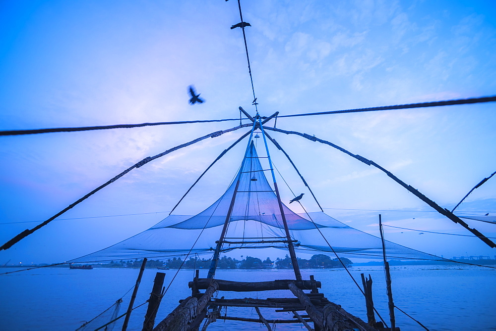 Traditional Chinese fishing nets at dawn, Fort Kochi (Cochin), Kerala, India, Asia - 1272-191