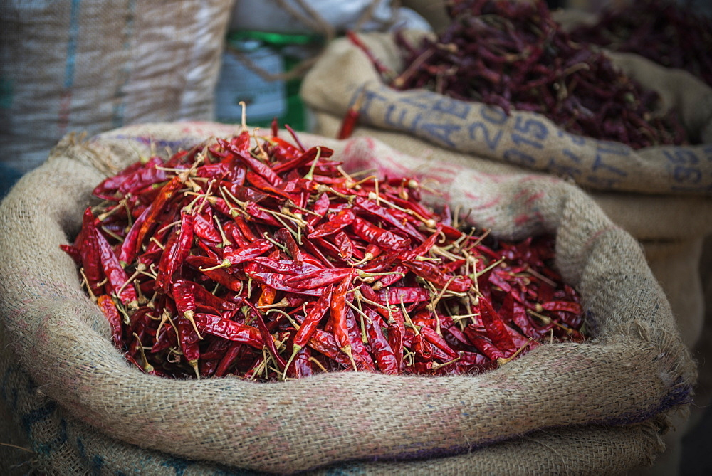 Chillies for sale at a spice market in Fort Kochi (Cochin), Kerala, India, Asia - 1272-197