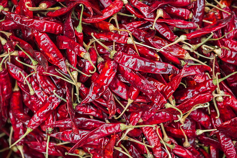 Chillies for sale at a spice market in Fort Kochi (Cochin), Kerala, India, Asia - 1272-198