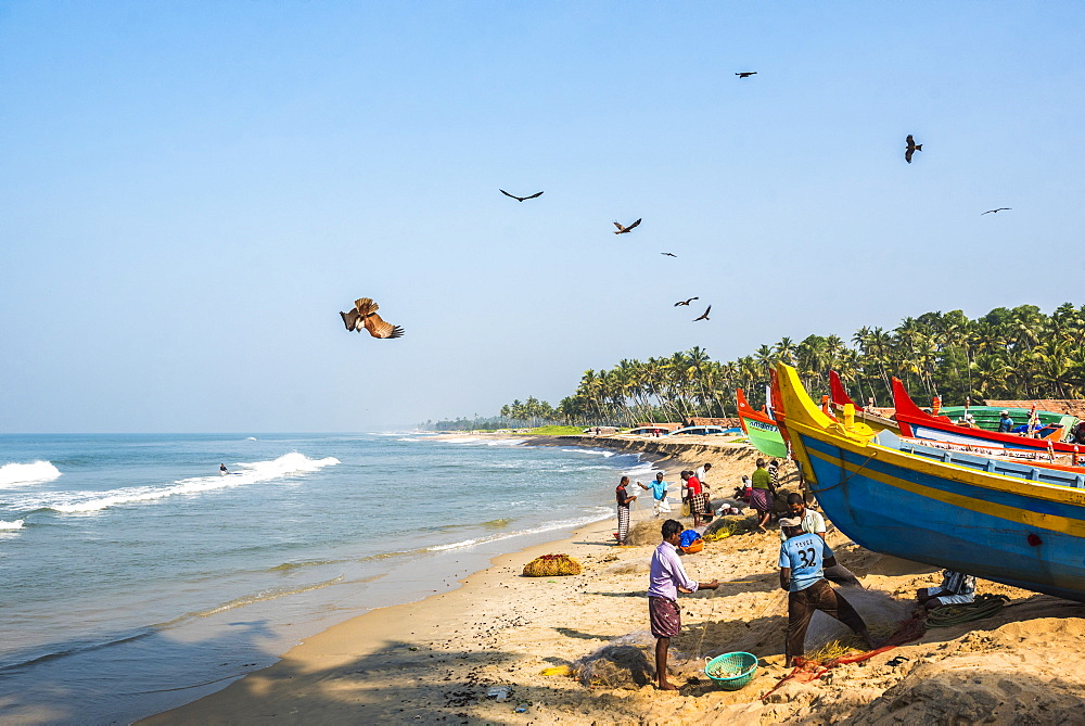 Fishermen at Kappil Beach, Varkala, Kerala, India, Asia
