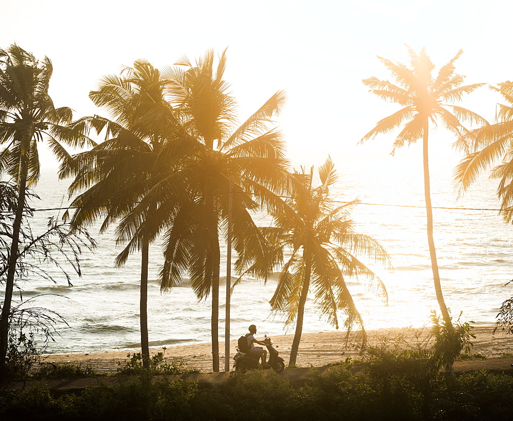 Tourist on a moped at sunset, Varkala, Kerala, India, Asia - 1272-232