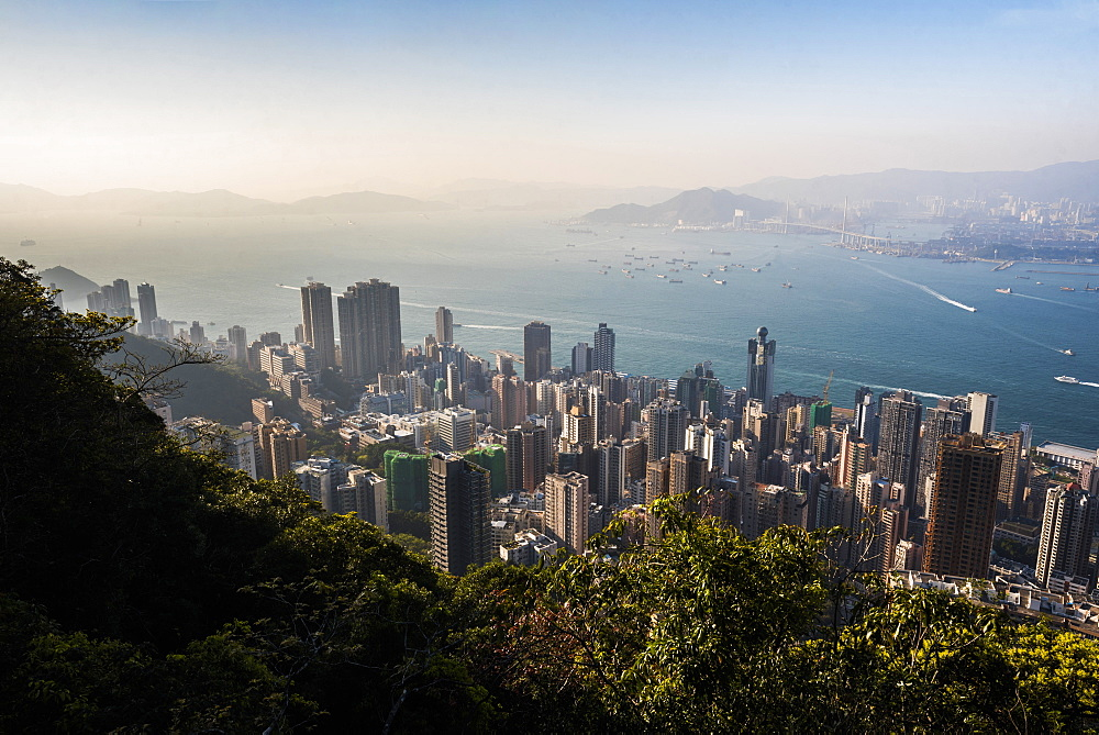 View over Victoria Harbour at sunset, seen from Victoria Peak, Hong Kong Island, Hong Kong, China, Asia - 1272-279