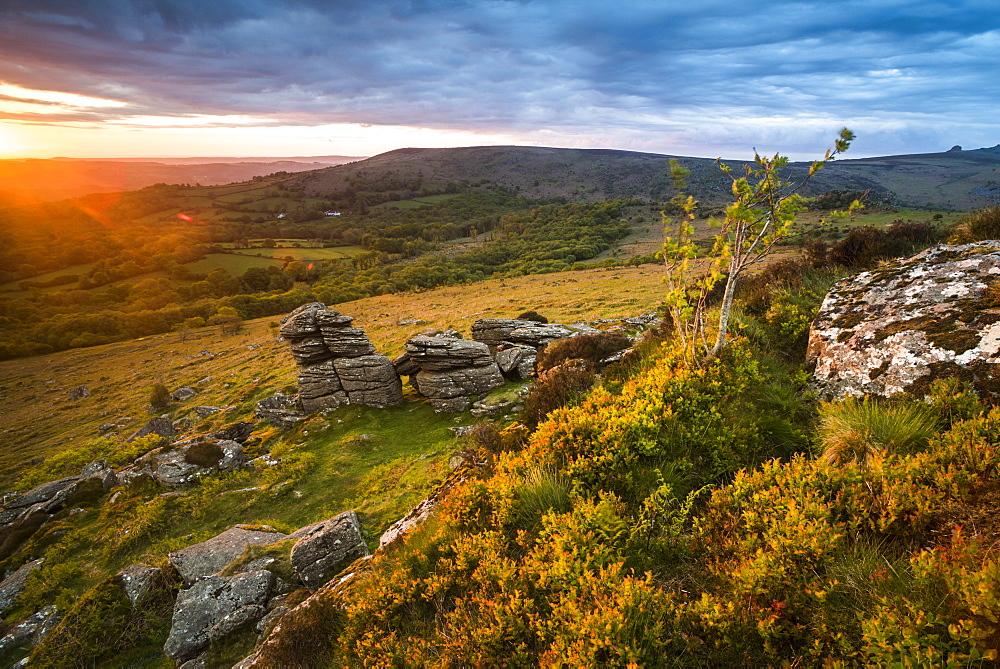 Tor at sunrise, Dartmoor National Park, Devon, England, United Kingdom, Europe