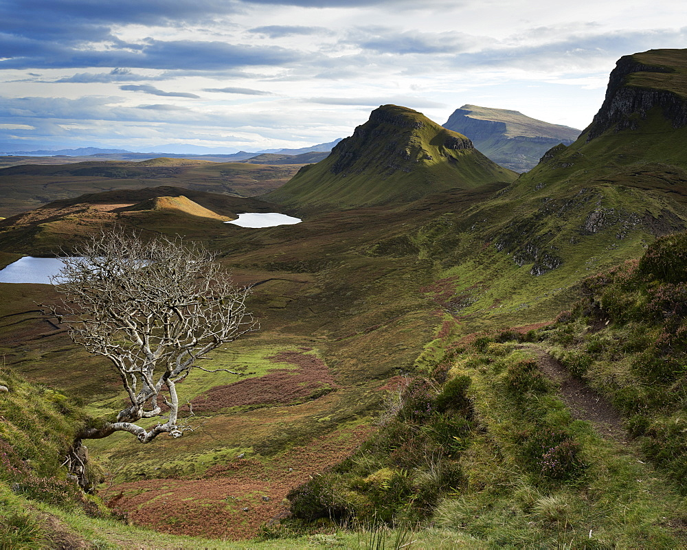 Quiraing, Isle of Skye, Inner Hebrides, Scotland, United Kingdom, Europe