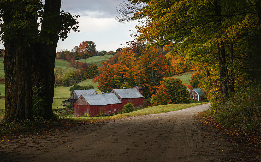 Classic view of the Jenne farm in a fall morning, Vermont, USA - 1275-124