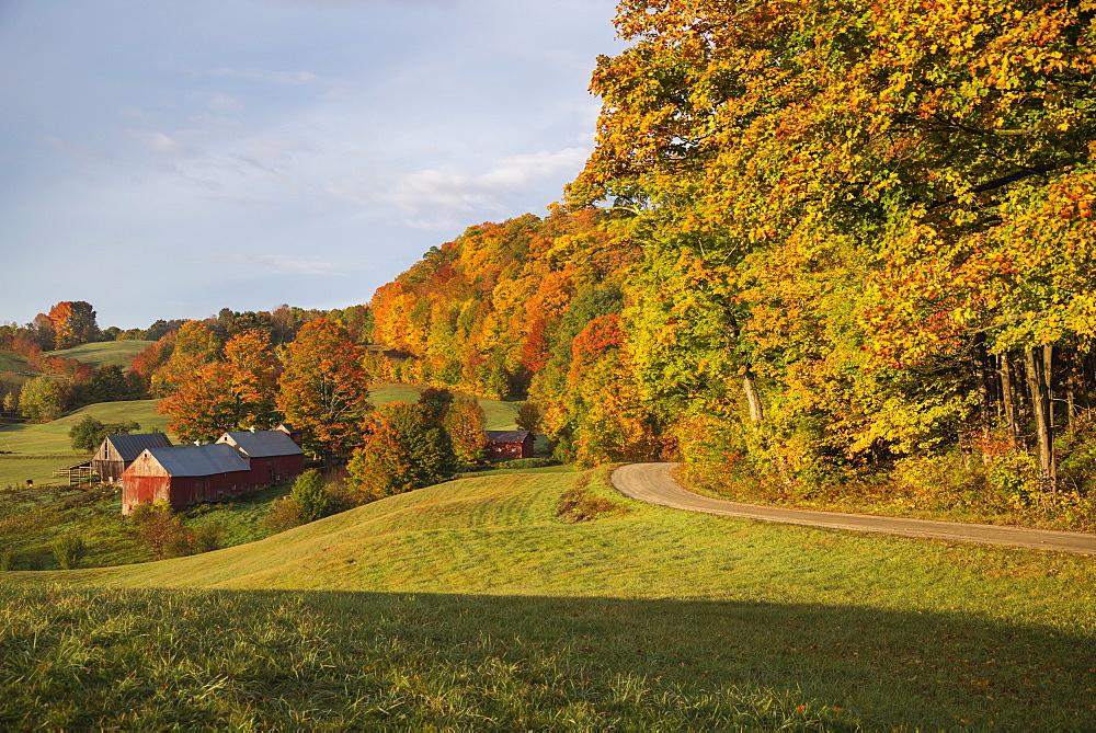 Jenne Farm in an autumn morning, Vermont, USA - 1275-127