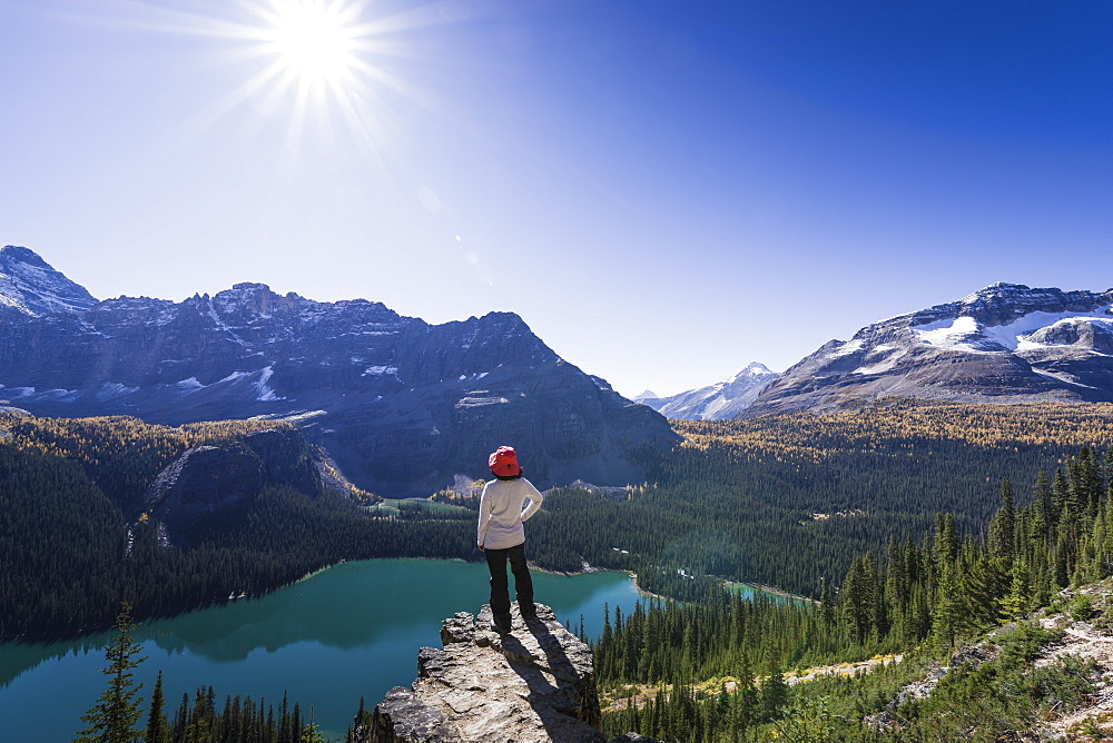 Hiker looking at the view of Alpine mountains and Lake O'Hara from the Alpine circuit trail, Yoho National Park, UNESCO World Heritage Site, Canadian Rockies, British Columbia, Canada, North America - 1275-19
