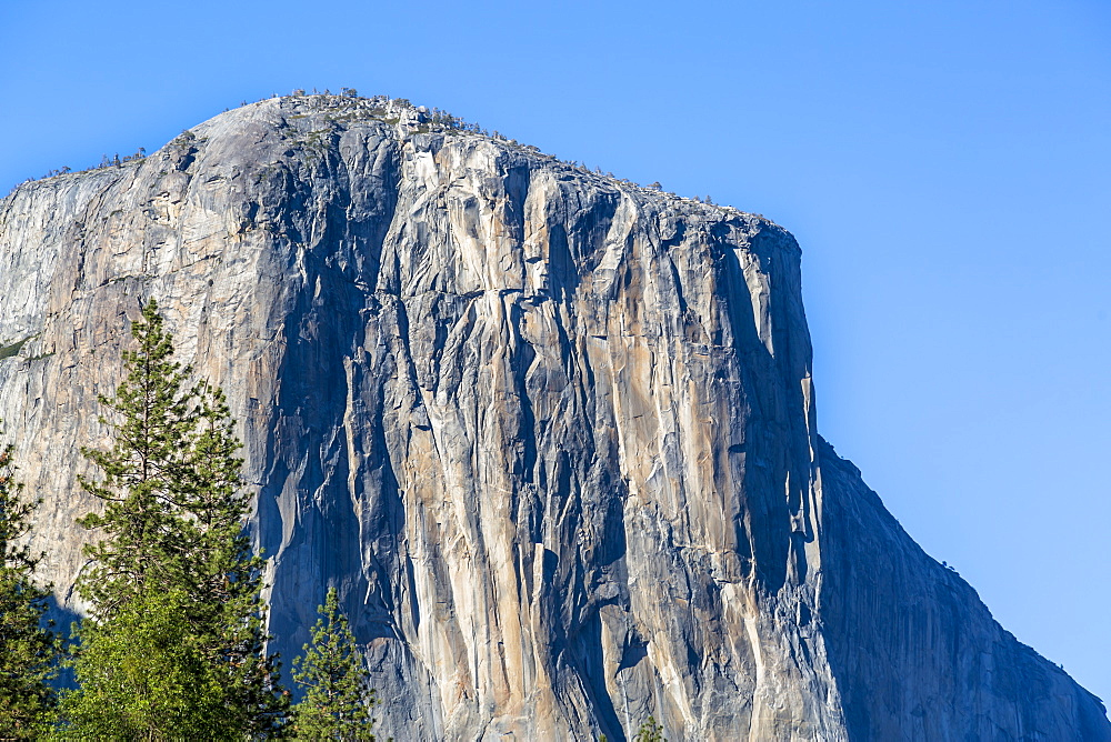 El Capitan in Yosemite Valley, UNESCO World Heritage Site, California, United States of America, North America - 1276-182