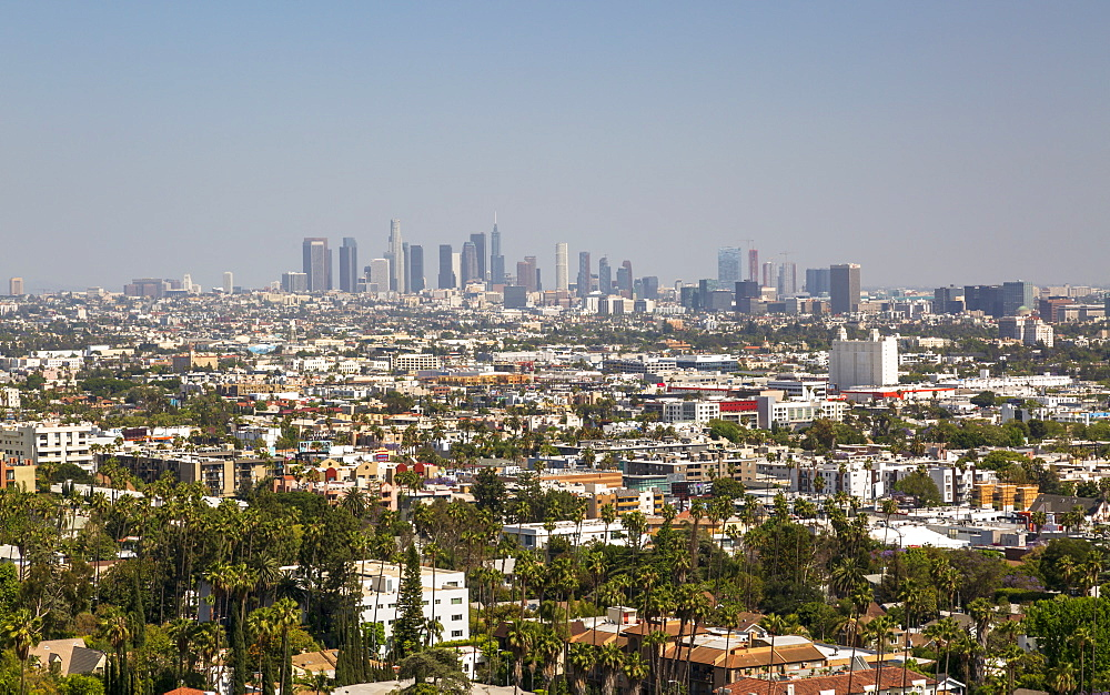 View of Downtown skyline from Hollywood Hills, Los Angeles, California, United States of America, North America