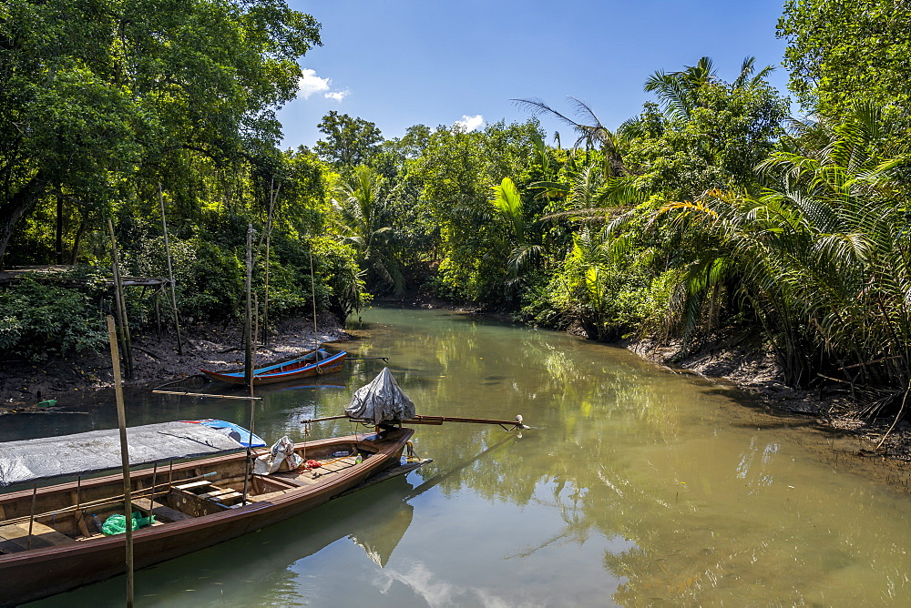 Tha Pom Klong Song Nam national park, Krabi Province, Thailand, South East Asia