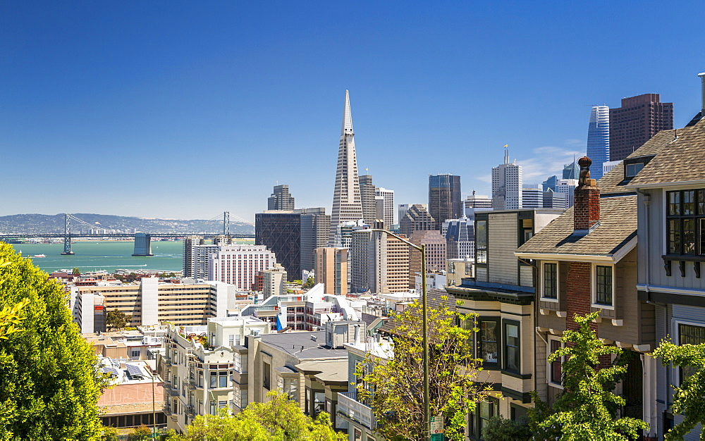 Street view of Transamerica Pyramid and Oakland Bay Bridge, San Francisco, California, United States of America, North America