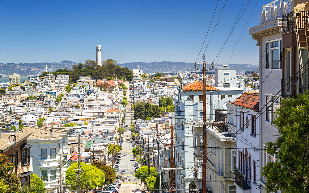 View of Coit Tower from Russian Hill, San Francisco, California, United States of America, North America