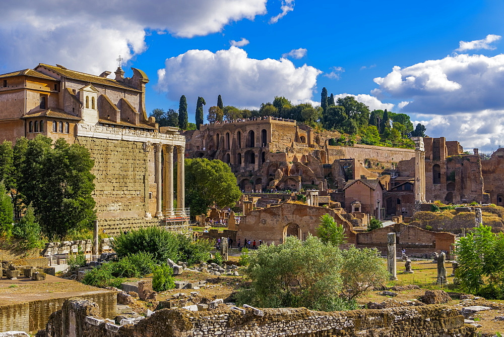 Panoramic view of surviving structures and ancient ruins in the Roman Forum, UNESCO World Heritage Site, Rome, Lazio, Italy, Europe - 1278-60