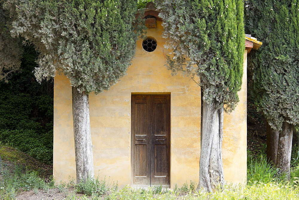 A small Tuscan chapel surrounded by Cypress trees near Lucignano d'Asso, Tuscany, Italy, Europe