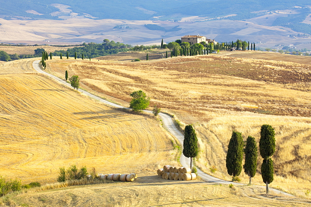 Cypress trees and fields in the afternoon sun at Agriturismo Terrapille (Gladiator Villa) near Pienza in Tuscany, Italy, Europe - 1284-60