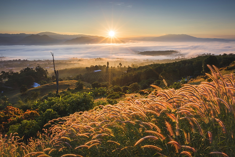 Sunrise from Yun Lai Viewpoint, Thailand, Southeast Asia, Asia - 1286-1