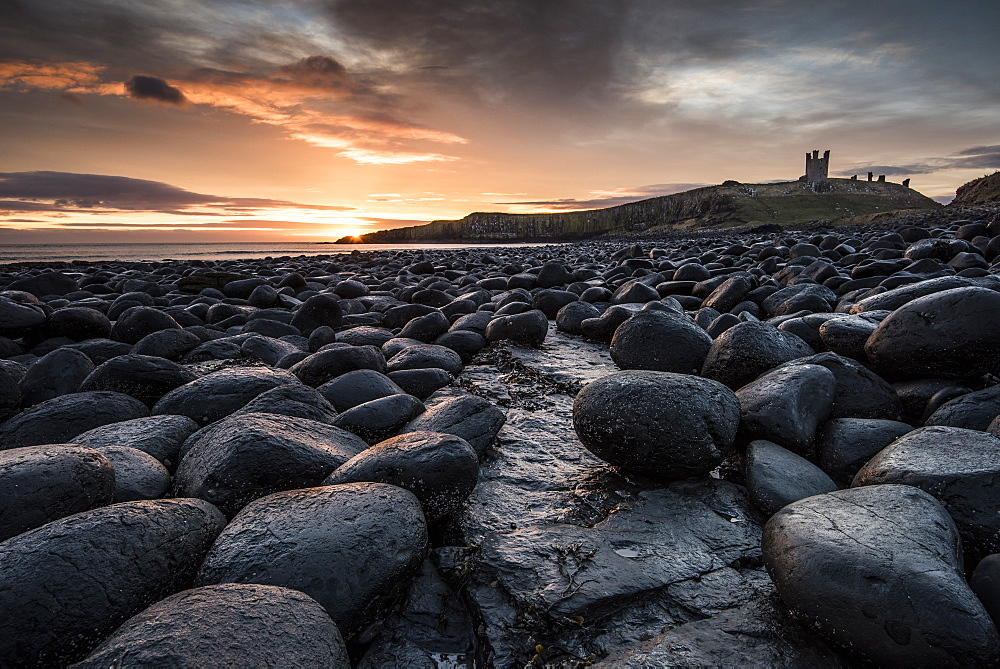 Dawn light reflecting on the rocks at Dunstanburgh Castle on the North East Coast, Northumberland, England, United Kingdom, Europe - 1287-10