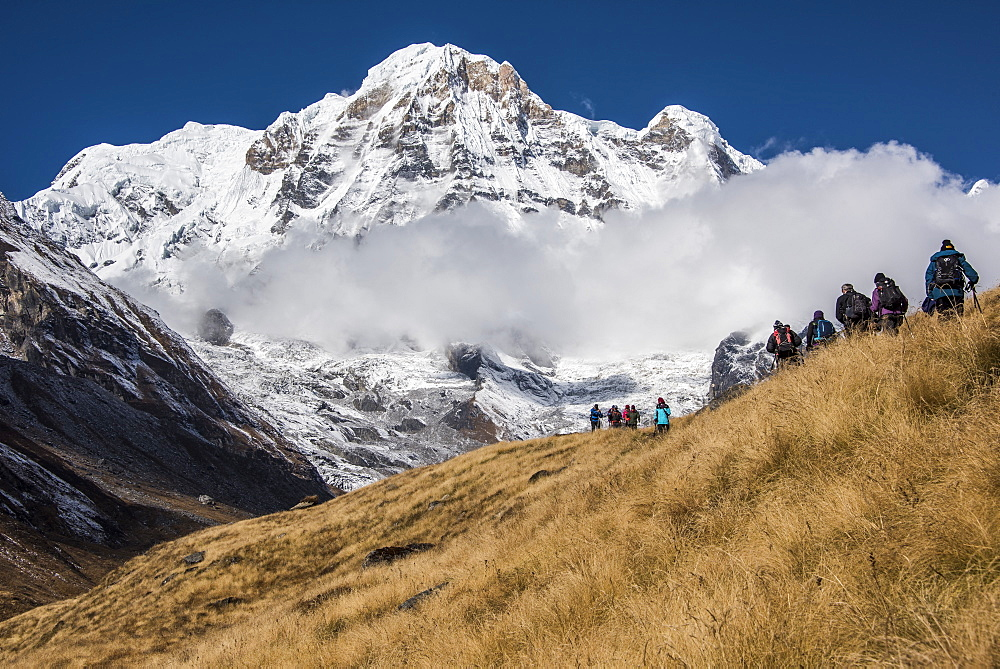A group of Trekkers approaching Annapurna Base Camp, with Annapurna South looming large in the background, Himalayas, Nepal, Asia