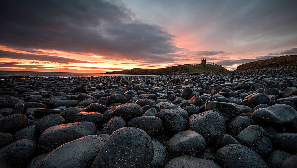 Dawn light reflecting on the rocks at Dunstanburgh Castle on the North East Coast, Northumberland, England, United Kingdom, Europe - 1287-9
