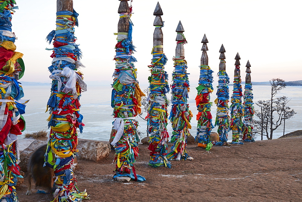 Colorful decorated Buddhist shaman poles above Lake Baikal on Olkhon island at sunrise in winter, Siberia, Russia, Eurasia - 1294-119