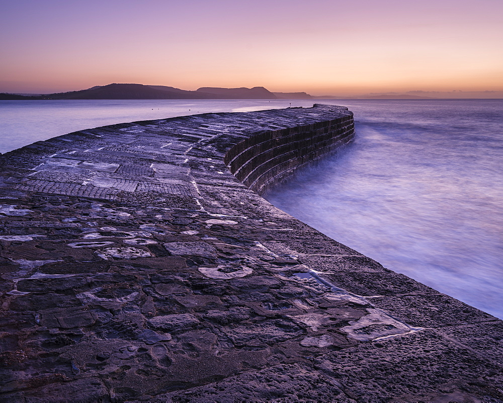 The harbour wall known as The Cobb in Lyme Regis, Dorset, UK