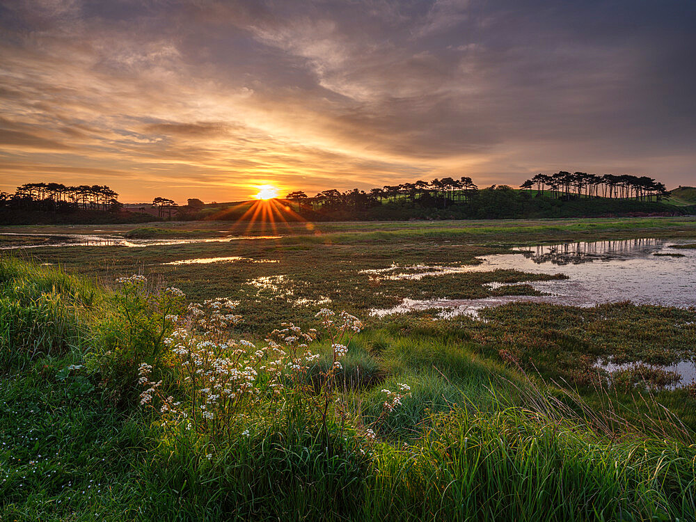 Sunrise across the salt marshes of the River Otter at Budleigh Salterton, Devon, UK - 1295-239