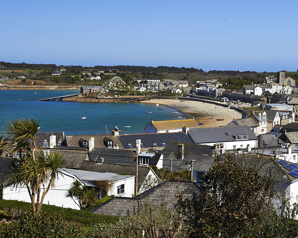 A sunny day over the rooftops of Hugh Town, St. Mary's, Isles of Scilly, England, United Kingdom, Europe - 1295-261
