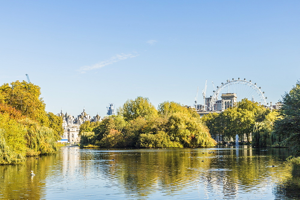 A view of St. James's Park lake and the London Eye in the background in St. James's Park, London, England, United Kingdom, Europe - 1297-418