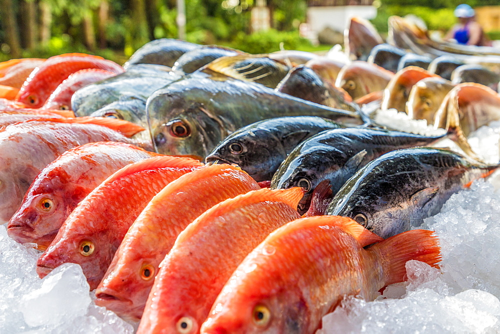 Fresh fish ready to barbecue in Kata, Phuket, Thailand, Southeast Asia, Asia