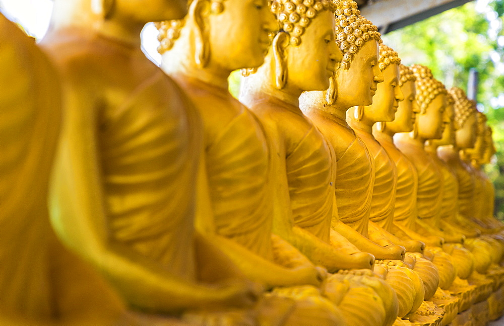 A row of seated Buddhas at the Big Buddha complex (The Great Buddha) in Phuket, Thailand, Southeast Asia, Asia